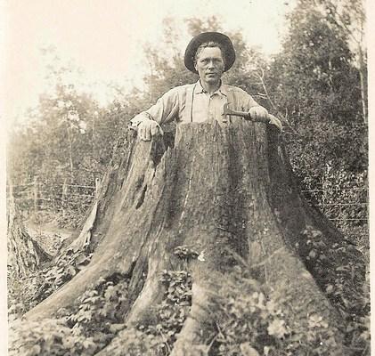 Carnivorous Stump?