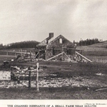 The 1918 Fire:  The Stark Aftermath