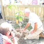 Treeplanting08_058