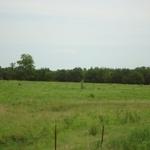 Walker Ranch (2).JPG