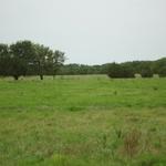 Walker Ranch (4).JPG