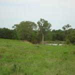 Walker Ranch (5).JPG