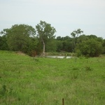 Walker Ranch (3).JPG