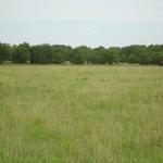 Walker Ranch (11).JPG