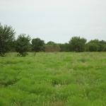 Walker Ranch (16).JPG
