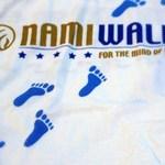 NAMIWalk logo
