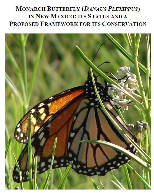 Monarch Butterfly (DANAUS PLEXIPPUS) in New Mexico and a Framework for its Conservation