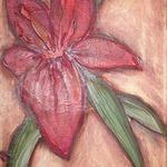 Flores para Analia Detalle