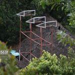 Solar_panel_towers_at_kafs