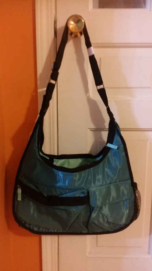 Auction 2014 - teal bag