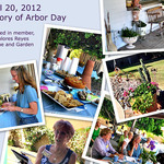 4-20-2012-collage---web