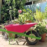 Pink-wheelbarrow