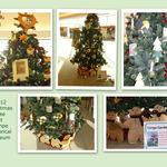 Tree_at_thm_2012