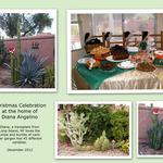 Collage-12-12-web