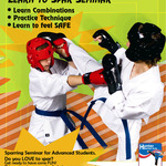 Sparring Seminar 20th February