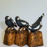 3 Magpies