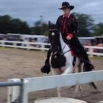 2014 Horse Show