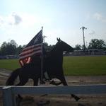 2011 CCC Horse Show