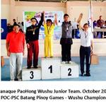 Wushu Competitions of Paranaque PaoHong Wushu Team