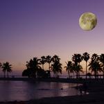 Matheson Hammock Beach, Miami