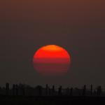 Sunrise on Misty Day