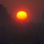 Sunrise Through Farm Sprinklers