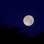 Moon Set over Redland