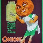 Onionsfit380
