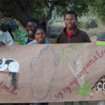 A banner created to teach about biodiversity