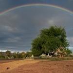 rainbow.jpg