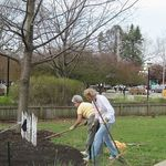 Cleanup2011-7