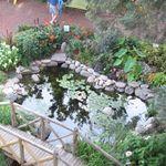 Ariel_pond_fair_2011