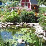 Pond_fair_2011