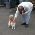 Pumpkin the Cat and Jim the Manager