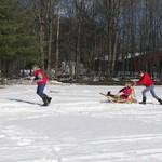 Human Dog Sled Fun!