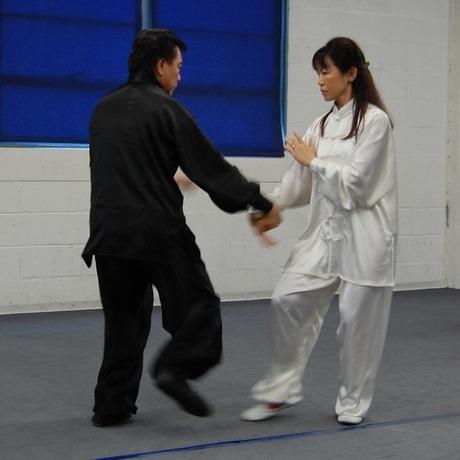 Tai Chi Chak 2009-3
