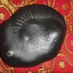 shaligram gallerey photo
