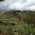 Haiti_nov._2012_219