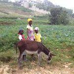 Haiti_nov._2012_321