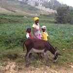 Haiti_nov._2012_322