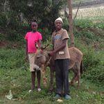 Haiti_nov._2012_326