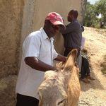Haiti_nov._2012_382