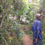 Haiti_nov._2012_391