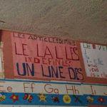 Haiti_nov._2012_799