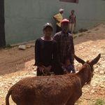 Cam_haiti_trip__april_2012_1144