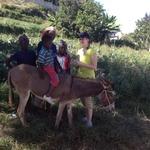 Haiti_nov_2013_216_-_copy