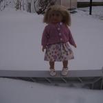 Meet the Mini dolls