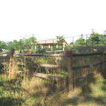 The Butterfly Garden began in 2003 in the woods between the Educ