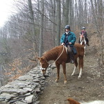 Riding the Mink Trail