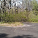 Parking Lot 7 area before cleanup